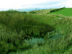 flood attenuation pond
