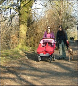 dog walk and buggy